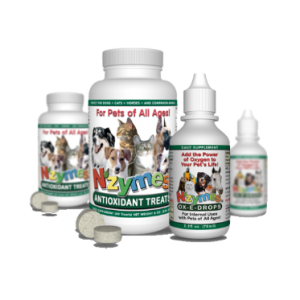 NZYMES Antioxidant Treats & Ox-E-Drops