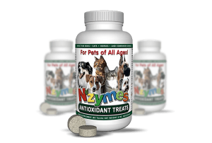 Antioxidant Treats for Dogs