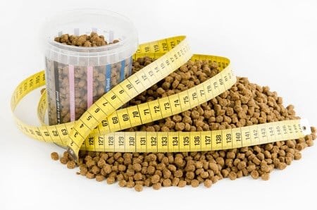 lots of dry kibble dog food with glucosamine