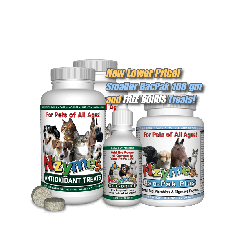 Best Supplements For Cushing Dogs