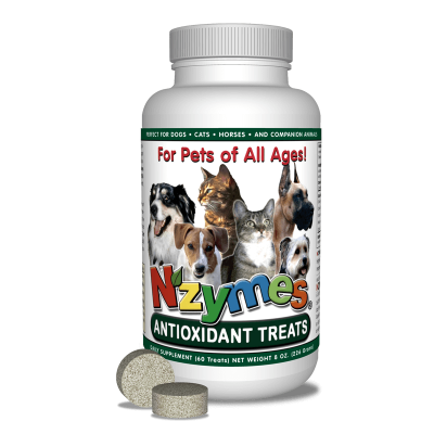 Antioxidant Treats for Pets