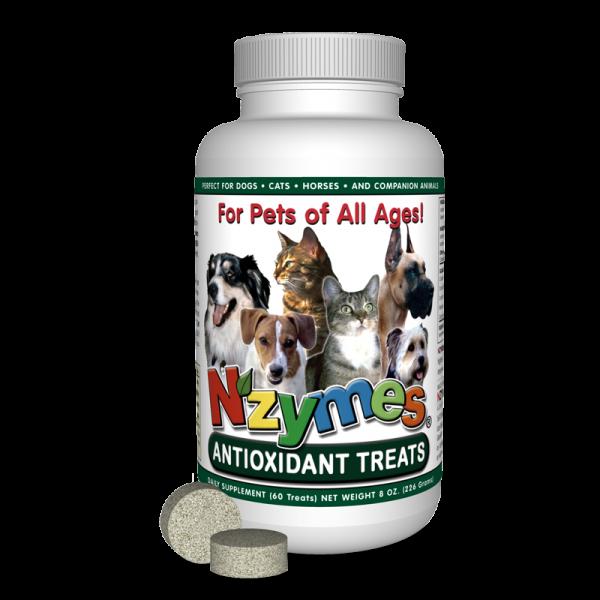 Antioxidant Treats for Pets