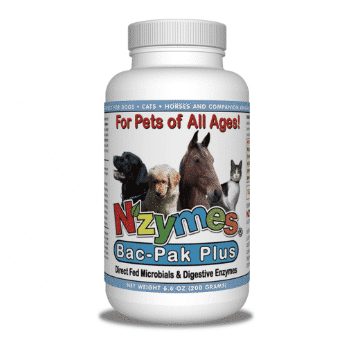 NZYMES BacPak Plus Probiotic Blend