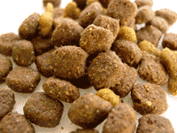 NZYMES Recommended Pet Foods