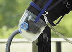 nebulizer for horse