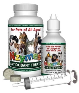 Respiratory kit w/syringe