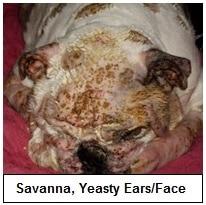 Savanna's yeast face