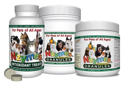 Nzymes Antioxidant support