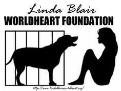 LBWF_logo