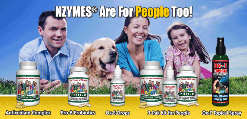 Nzymes for people