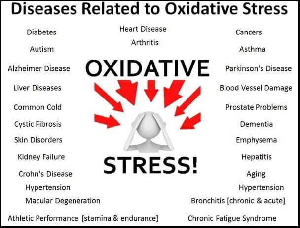 Oxidative_stress-w_border