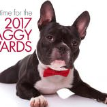 Nzymes Goes to the Waggy Awards!