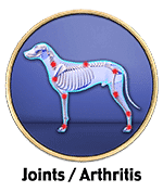 dog joint health or arthritis recovery stories