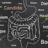 Candida Support Program for People