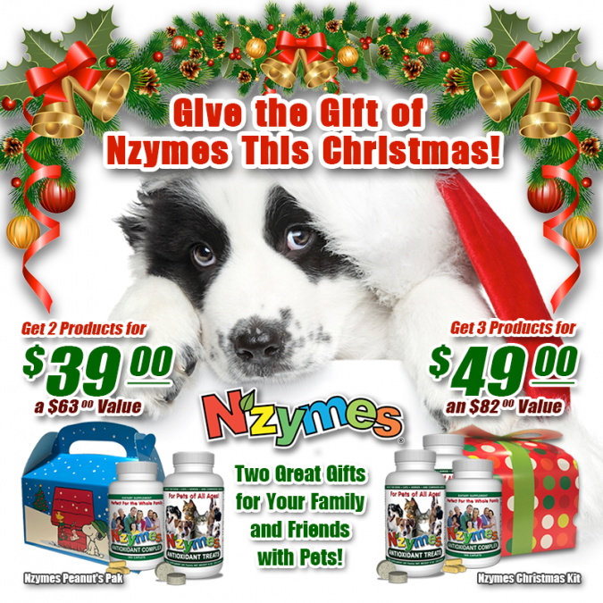 Nzymes Christmas Specials