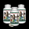 Antioxidant Treats 3-pak kit